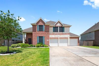Baytown Single Family Home For Sale: 8626 Briar Oaks Lane