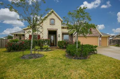 Sugar Land Single Family Home For Sale: 6003 Regal Falls Court