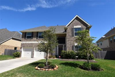 Pearland Single Family Home For Sale: 4207 Elaine Way