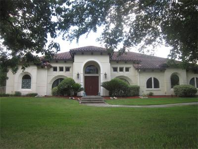 Rosenberg Single Family Home For Sale: 6719 Rustling Oaks Drive
