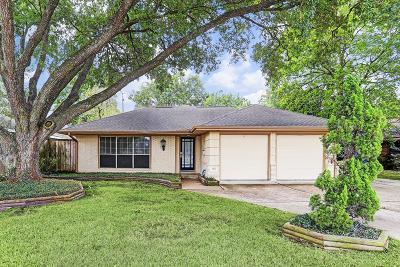 Houston Single Family Home For Sale: 3103 S Braeswood Boulevard