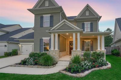 Montgomery County Single Family Home For Sale: 127 Jacks Corner Drive