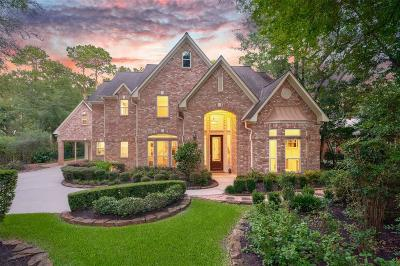 The Woodlands Single Family Home For Sale: 30 Skyflower Drive