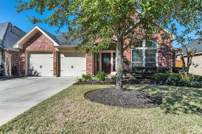 Fulshear Single Family Home For Sale: 6214 Silver Thistle Lane