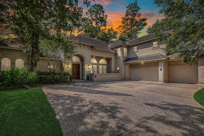 The Woodlands Single Family Home For Sale: 9 Water Mark Way