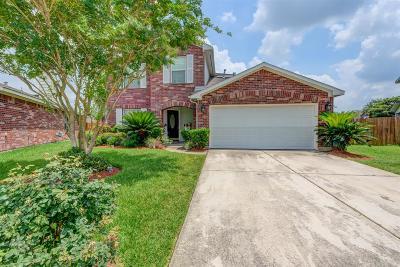 Houston Single Family Home For Sale: 2335 Mintglade Lane