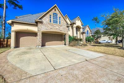 Cypress Single Family Home For Sale: 15822 Medina Lake Lane