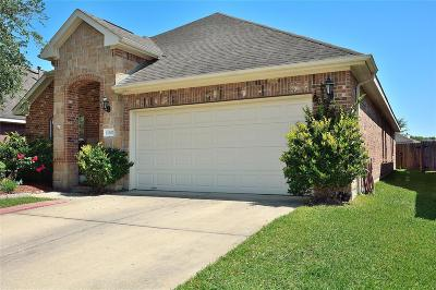 Galveston County, Harris County Single Family Home For Sale: 12307 Field Brook Court