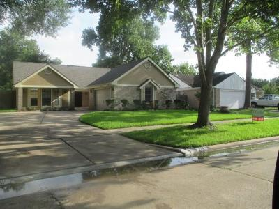 Sugar Land Single Family Home For Sale: 715 Rolling Mill Drive