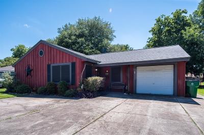 Angleton Single Family Home For Sale: 516 Evans Street