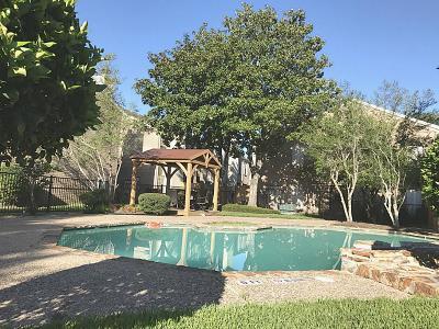 Houston Condo/Townhouse For Sale: 14600 Fonmeadow Drive #1111