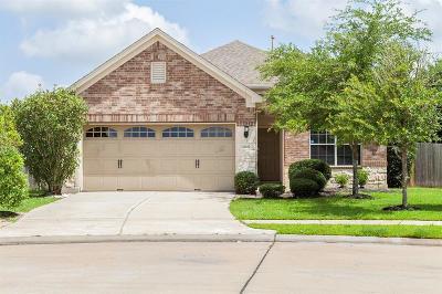 Katy Single Family Home For Sale: 24402 Dartford Springs Lane