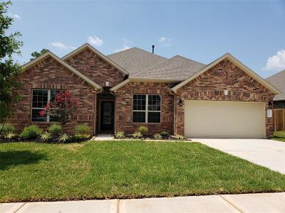 Conroe Single Family Home For Sale: 12257 Emerald Mist Lane
