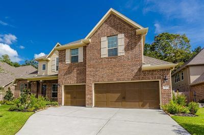 Conroe Single Family Home For Sale: 32027 Eagle Nest Lane