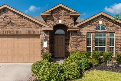 League City, League Single Family Home For Sale: 113 Rustic Colony Lane