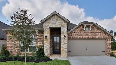 Tomball Single Family Home For Sale: 20215 Noble Arabian Drive