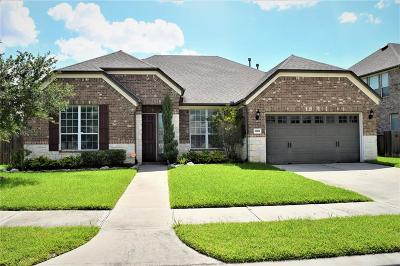 Katy Single Family Home For Sale: 25410 Celtic Terrace Drive