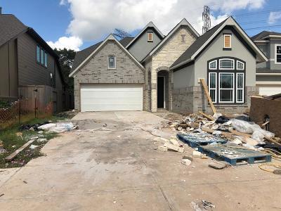 Missouri City Single Family Home For Sale: 11123 Elderflowers Drive