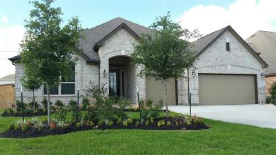 Katy Single Family Home For Sale: 6326 Sunstone Falls Lane