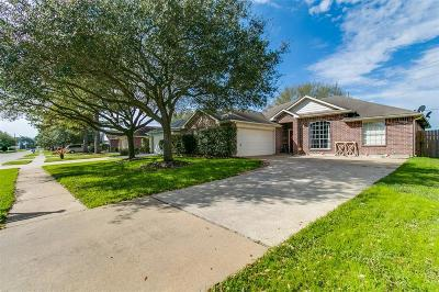 Tomball Single Family Home For Sale: 18115 Drum Heller Lane