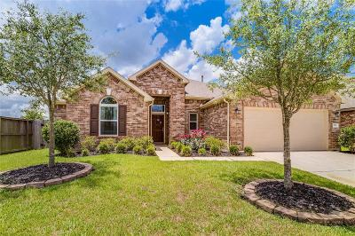 Katy Single Family Home For Sale: 2911 Katy Town Lane