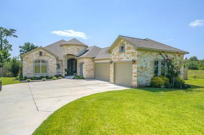 Montgomery Single Family Home For Sale: 8836 Grand Lake Estates Drive