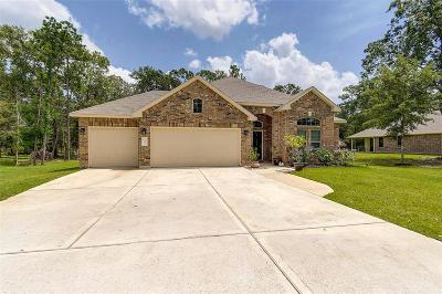 Conroe Single Family Home For Sale: 9171 Silver Back Trail