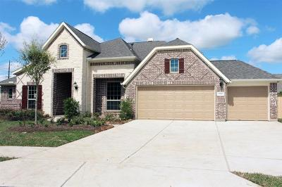 Sugar Land Single Family Home For Sale: 6238 Garden Lakes Lane