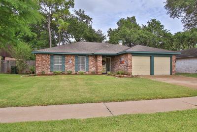 Sugar Land Single Family Home For Sale: 1110 Bournewood Drive