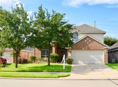 Tomball Single Family Home For Sale: 9642 Gold Rush Springs Drive