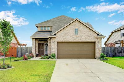 Texas City Single Family Home For Sale: 9602 Yellow Rose Drive
