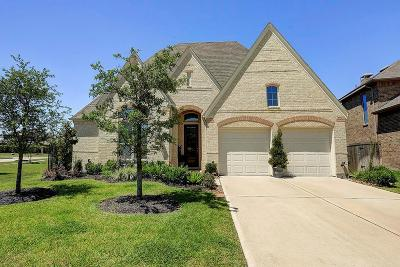 Manvel Single Family Home For Sale: 3934 Lupin Bush Lane
