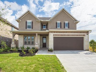 Missouri City Single Family Home For Sale: 2727 Dry Creek Drive