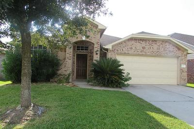 Tomball Single Family Home For Sale: 20307 Ray Falls Drive