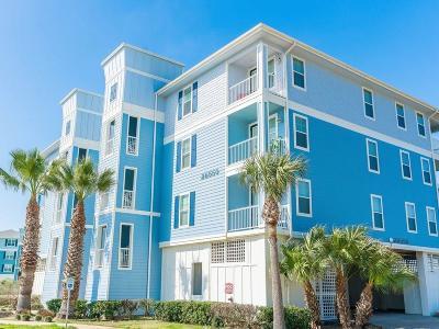 Galveston TX Condo/Townhouse For Sale: $215,000