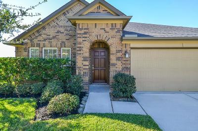 Katy Single Family Home For Sale: 28927 Davenport Drive