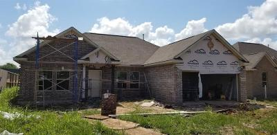 Angleton Single Family Home For Sale: 1301 Gifford Road
