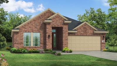 Fulshear Single Family Home For Sale: 29046 Turning Springs