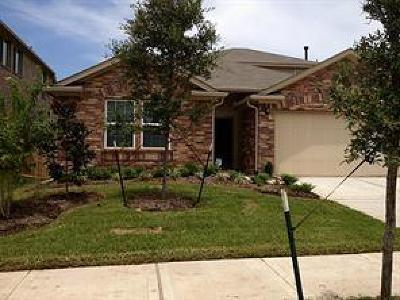 Houston, Katy, Cypress, Spring, Sugar Land, Woodlands, Missouri City, Pasadena, Pearland Rental For Rent: 6923 Stevenson Drive