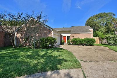 Houston Single Family Home For Sale: 2002 Ashford Hollow Lane