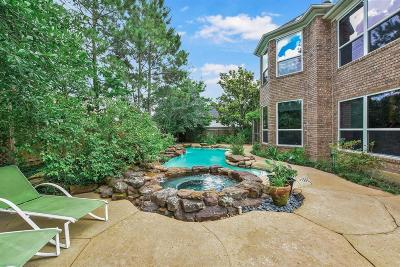 The Woodlands Single Family Home For Sale: 222 Split Rock Road
