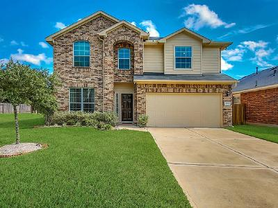 Katy Single Family Home For Sale: 2910 Lakecrest Ridge Drive