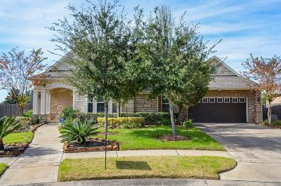 Sugar Land Single Family Home For Sale: 1318 Heritage Place Place