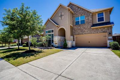 Cypress Single Family Home For Sale: 17807 Creek Bluff Lane