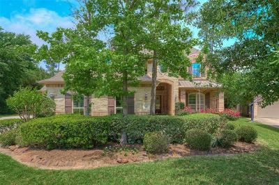 The Woodlands Single Family Home For Sale: 30 N Veilwood Circle