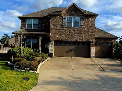 Tomball Single Family Home For Sale: 51 Tidwillow Place