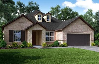 Manvel Single Family Home For Sale: 7202 Water Glen Lane