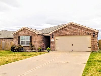 Fort Bend County Single Family Home For Sale: 6702 Plum Springs Lane
