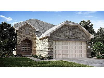 New Caney Single Family Home For Sale: 18897 Genova Bay Court