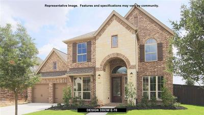New Caney Single Family Home For Sale: 18843 Collins View Drive